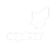 Equinor_PRIMARY_logo_RGB_WHITE.PNG