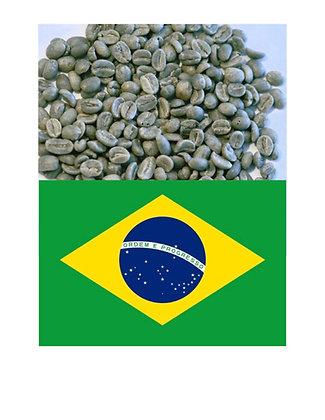 Brasil Cerrado - South America