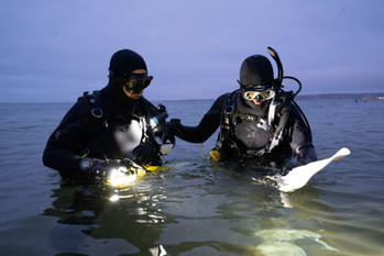 Night Divers.jpg