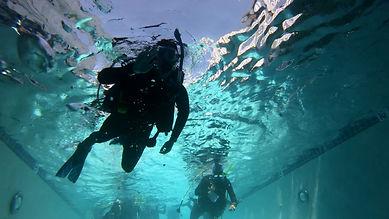 diverwaving.jpg