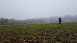 a misty reflection walk