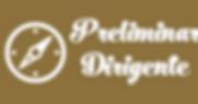 Dirigente Preliminar.png