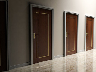 You always Want to Choose the Right Door