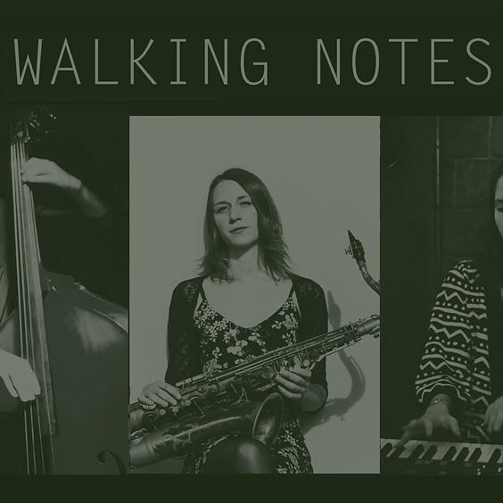Walking Notes, (Blues - Jazz)