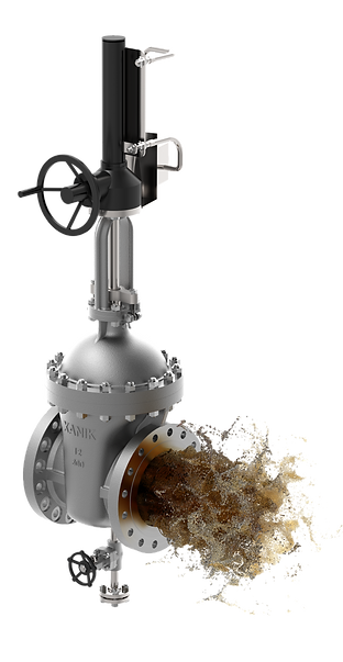 xanik | bolted bonnet gate valve