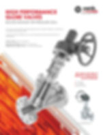 high performance globe valves | xanik