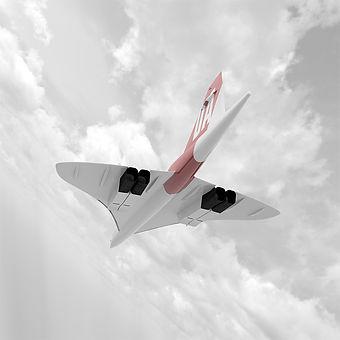 Under View Flying0000.jpg