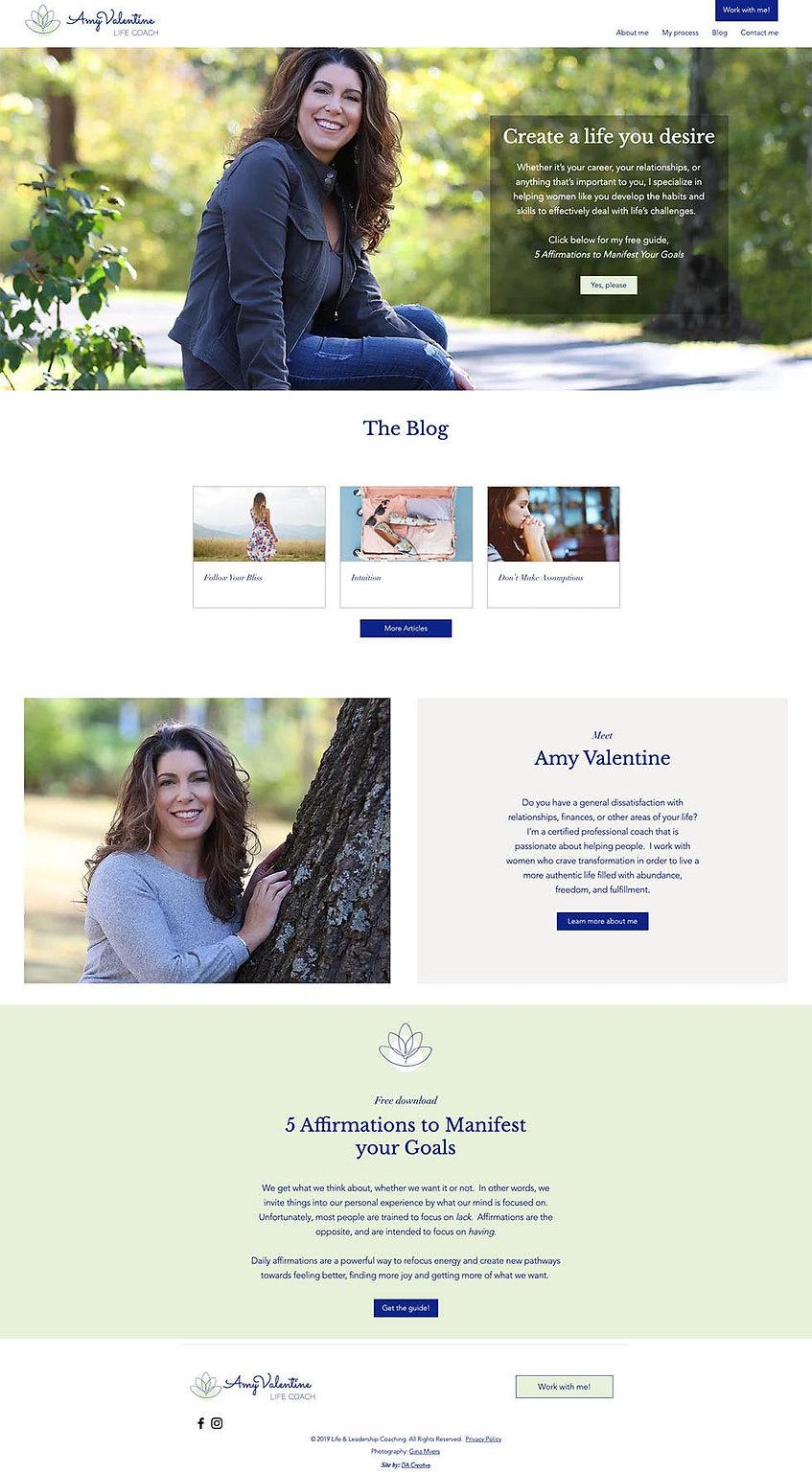 amy v home page-min.jpg