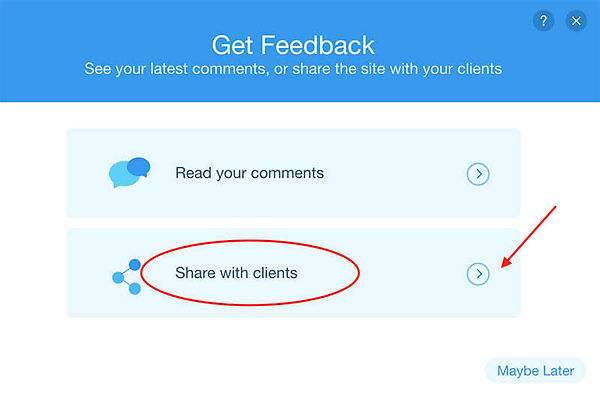 Screenshot the Share with Clients option