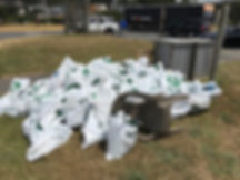 81 Bags of Debris.jpg