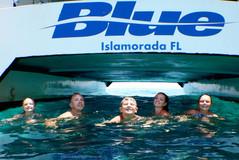 Private Boat Wedding