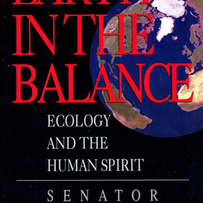 Earth In The Balance: A Review