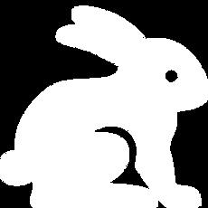 Animals-Rabbit-icon.png