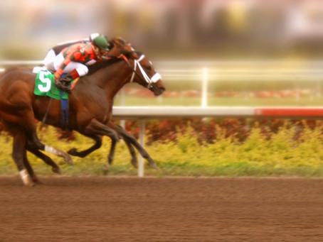 Male VS Female Jockeys - Who is Better?