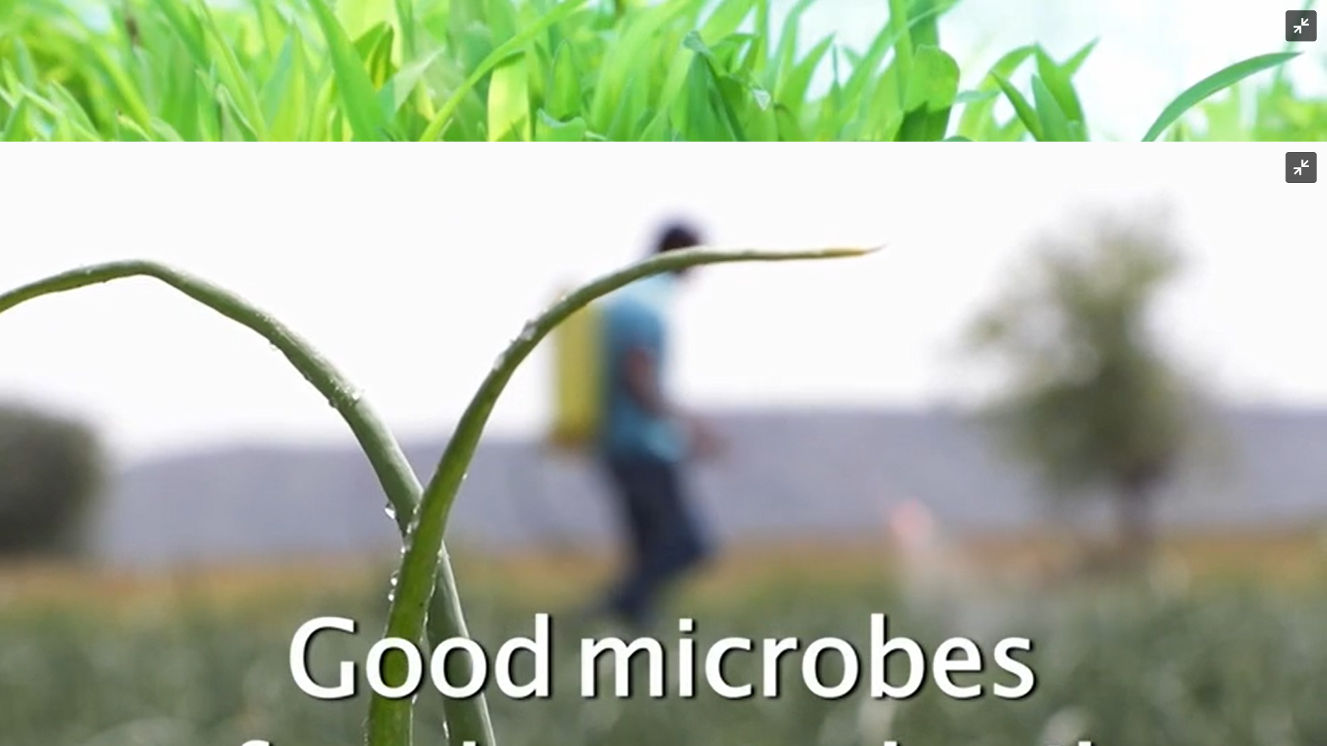 Good Microbes