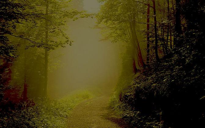 WoodsGreen.jpg