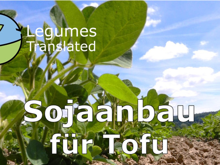 Soya cultivation for tofu, Legumes Translated eighth video available