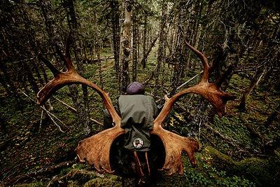 huntersman2.jpg