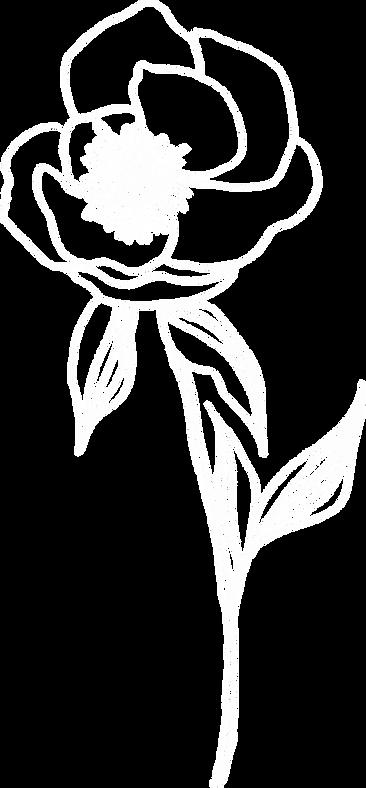 flower4a copy.png
