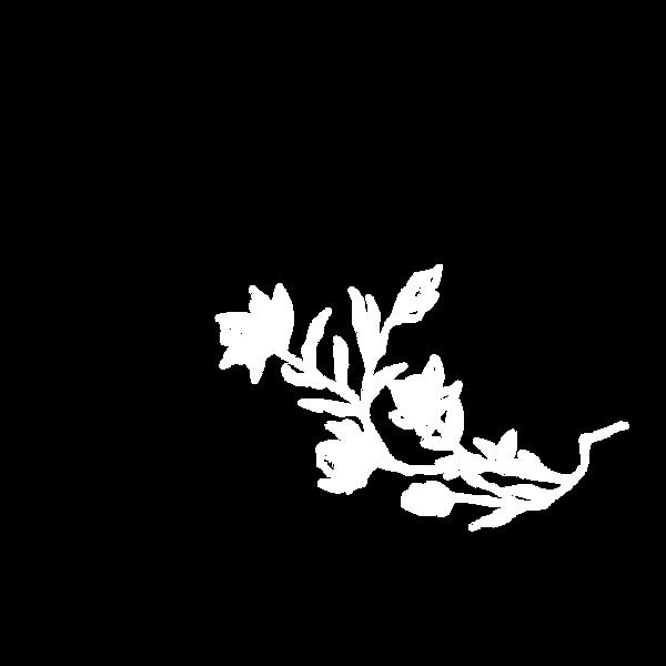 plant4 copya.png