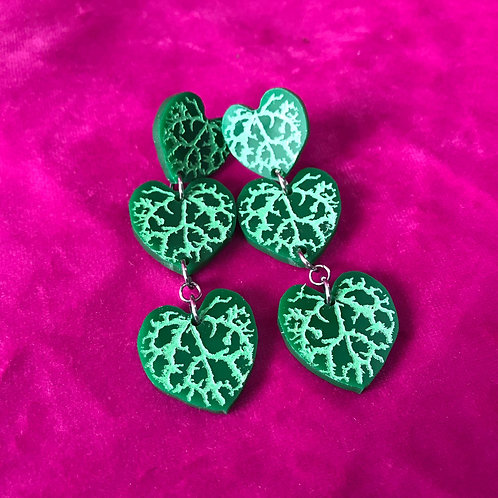 Ceropegia(String of Hearts) - Studs