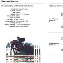Kingsway Diamond (ID)