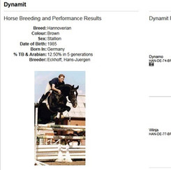 Dynamit (HAN)