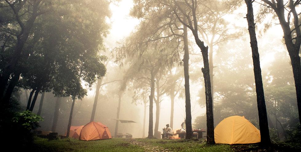 フォギーキャンプ場