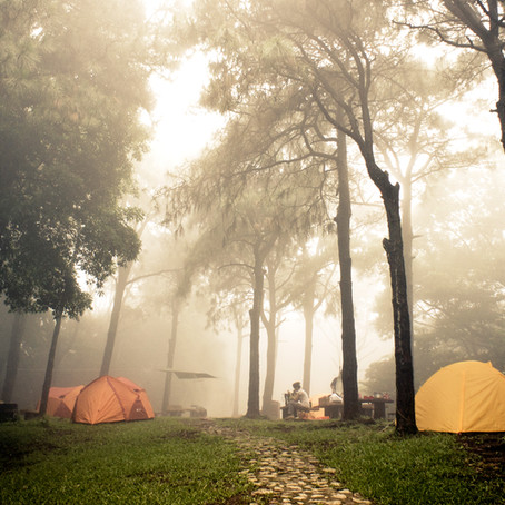 Why you should always have flushable wipes for men when camping