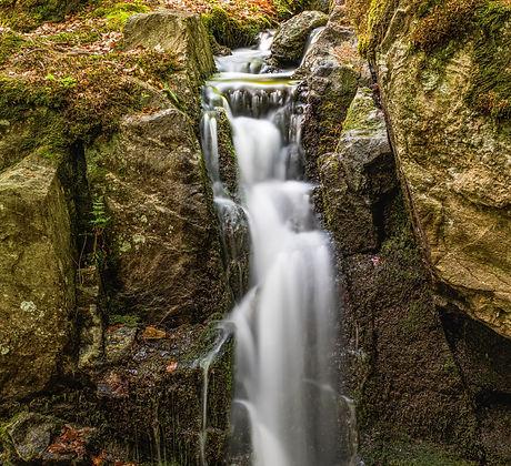 cascade-creek-environment-1080421.jpg