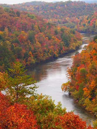 cumberland fall.jpg