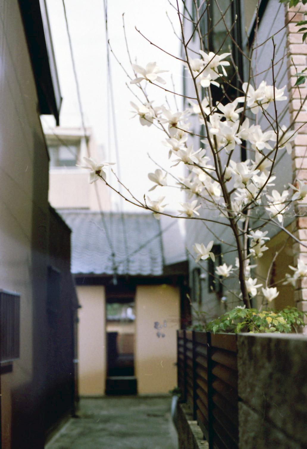 10_03_22_竣工写真syu_むね (5b)