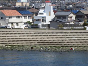 「海の家、庭の家、太陽の塔」竣工間近