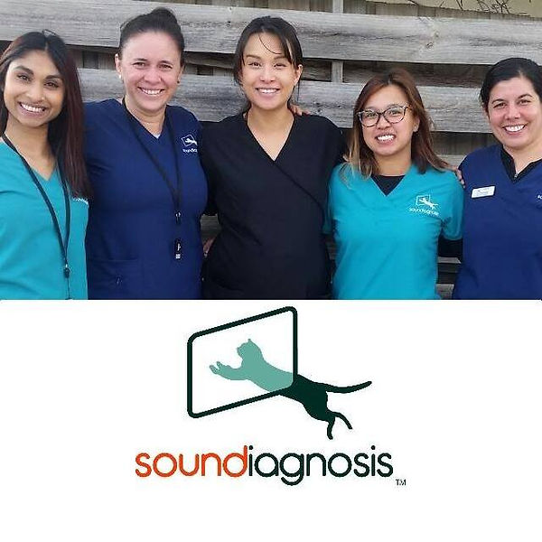 Soundiagnosis