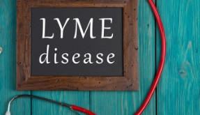 Lyme is a Complex, Multifaceted Disease