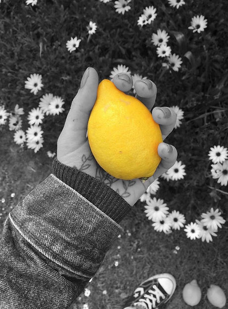 H.M. holds a yellow lemon that stands out against a black and white background.
