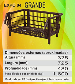 EXPO 04 GRANDE.png