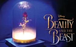Enchanted Rose - B&TB Musical