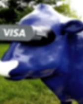 Work Gallery Visa.jpg