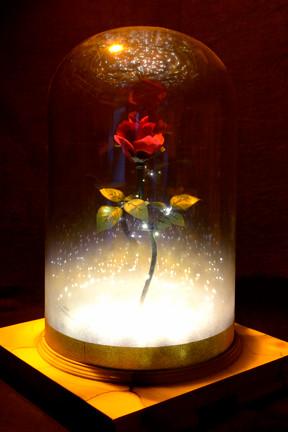 GDT B&TB Rose amber