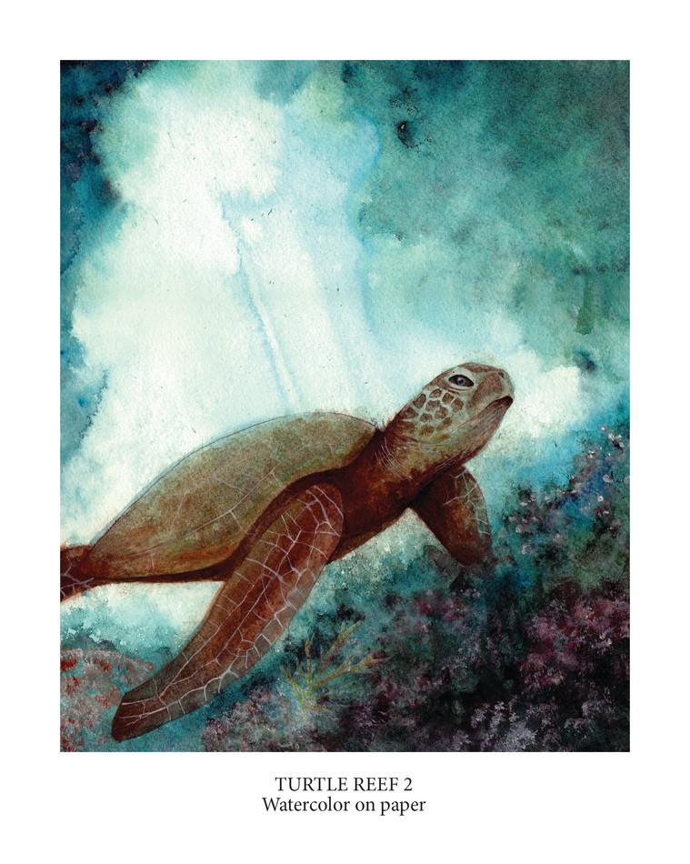 Turtle Reef 2