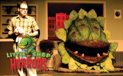 Audrey II - Little Shop of Horrors