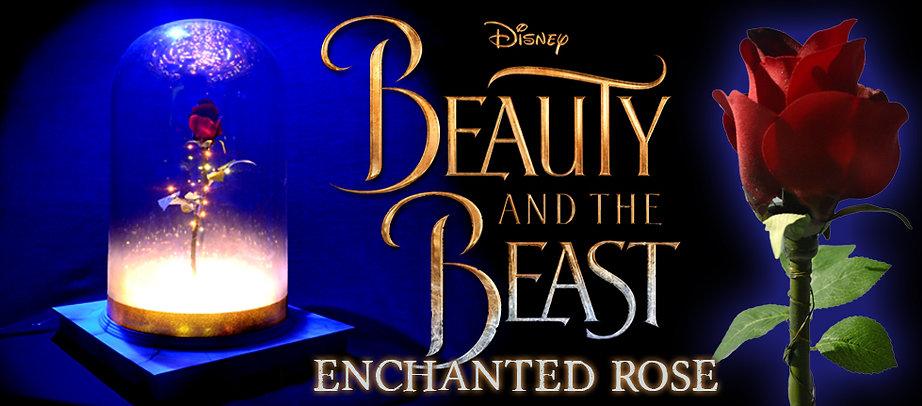 B&TB Enchanted Rose RENTAL