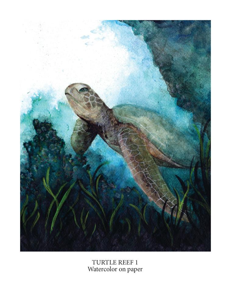 Turtle Reef 1