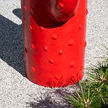 cactus rouge 4.jpg