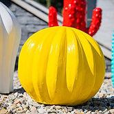 cactus jaune 3.jpg
