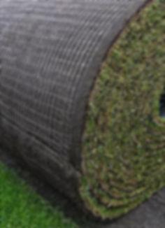 gazon naturel rouleaux pelouse naturelle