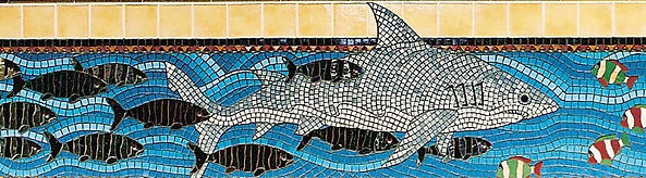 Shark mosaic, deep end of pool by ABQ Art Glass