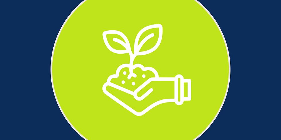 Curso Sustentabilidad - Charla de Apoyo N°1