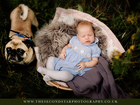 Outdoors baby and family session with the Tillbrook Family